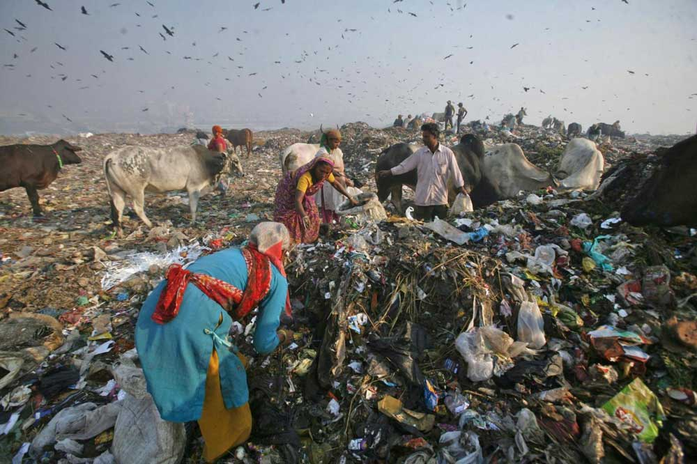 India Just Banned All Forms Of Disposable Plastic In Its Capital | The Independent