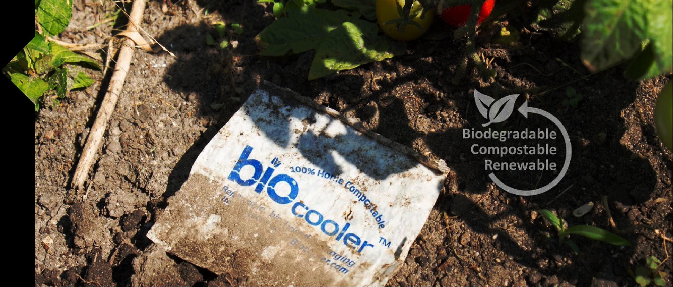 Compostable packaging biocooler biodegradable biobased